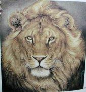 象征勇气的狮子lion纹身图案图片的含义及说法