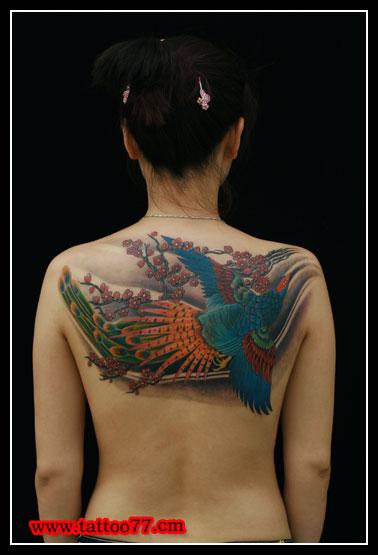 孔雀纹身作品