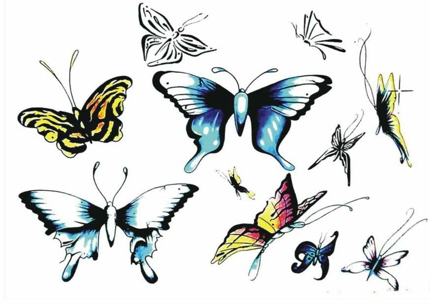 蝴蝶纹身图案图片 矢量图 设计  (874x622); 蝴蝶纹身图案; 腰部和大