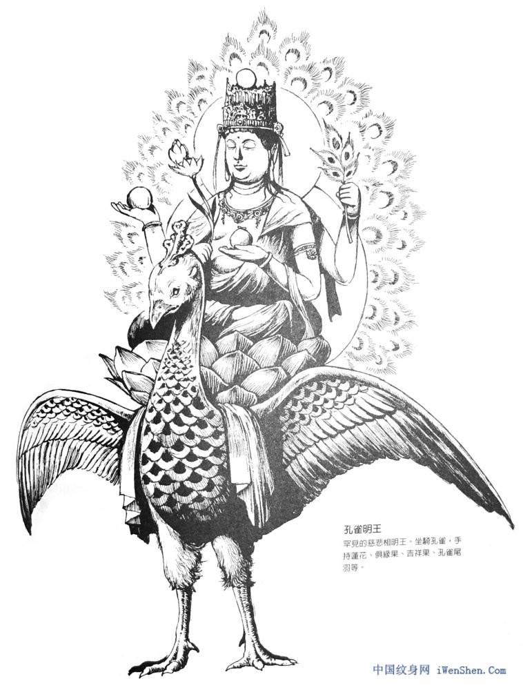 孔雀大明王菩萨纹身图案