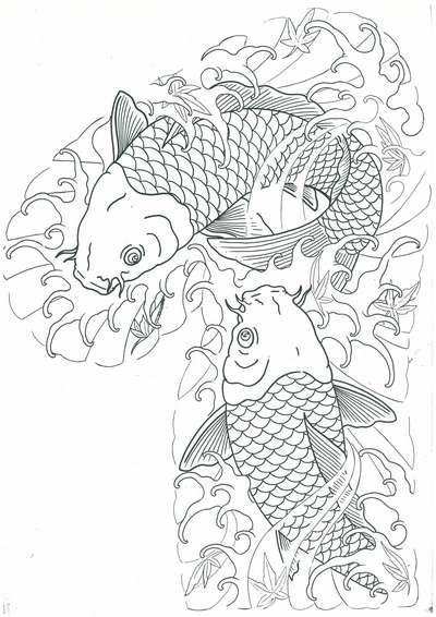 半胛传统鲤鱼纹身图案线稿,半胛传统鲤鱼纹身图案割线