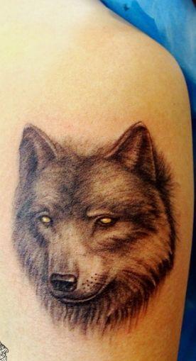 可爱 小 狐狸 纹身    猫咪 纹身; 纹身图案大全:美女腿部狼头纹身