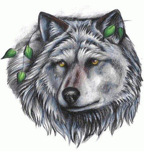 动物纹身图案:黑白狼头纹身图案图片