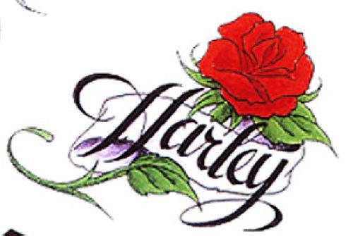 欧美玫瑰花纹身手稿