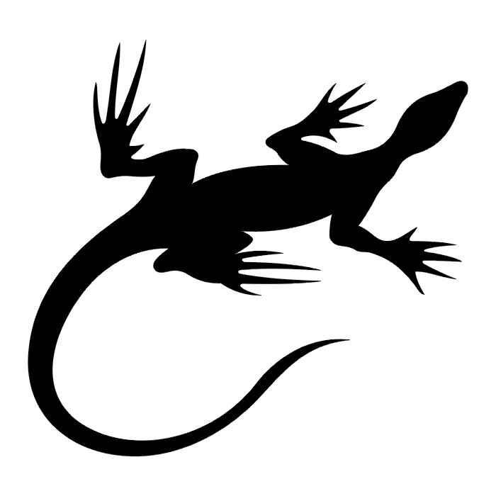 武汉专业纹身店:彩色图腾蜥蜴纹