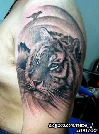 男人大臂纹身图案:男人大臂老虎纹身图案图片