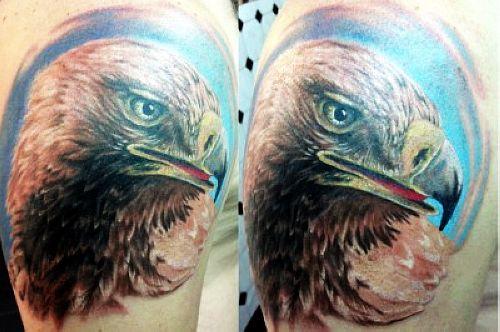 主页 纹身图案大全 鹰纹身图案大全  ------分隔线