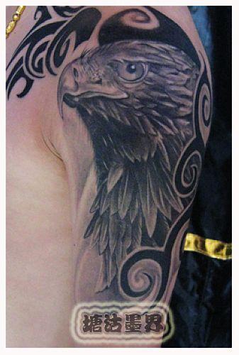 专业纹身店:大臂图腾老鹰纹身图案图片大全