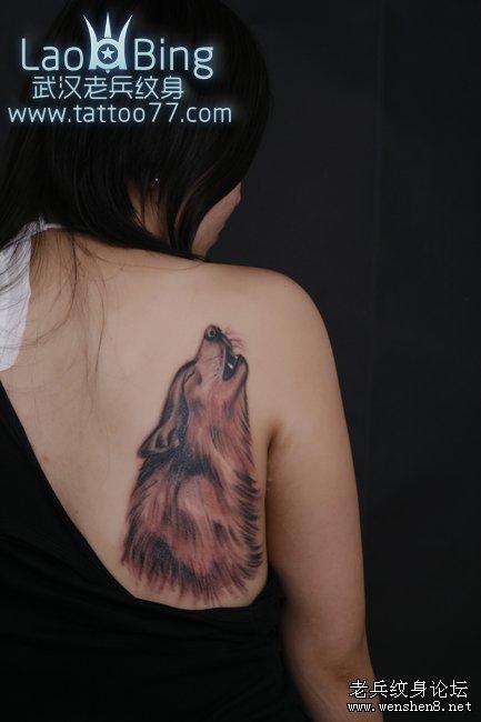 最好的纹身店:图腾狼头纹身图案的代表性