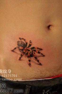 好看的腹部蜘蛛纹身图案