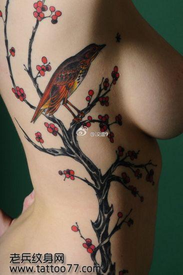 美女侧腰梅花喜鹊纹身图案