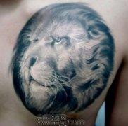 男孩子喜欢的肩背狮头纹身图案