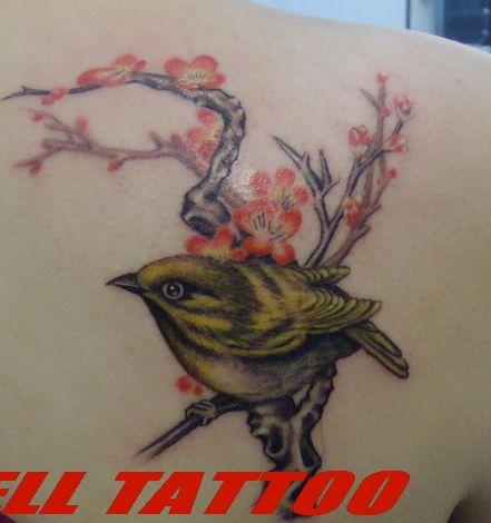 美女背部彩色小喜鹊纹身图案图片