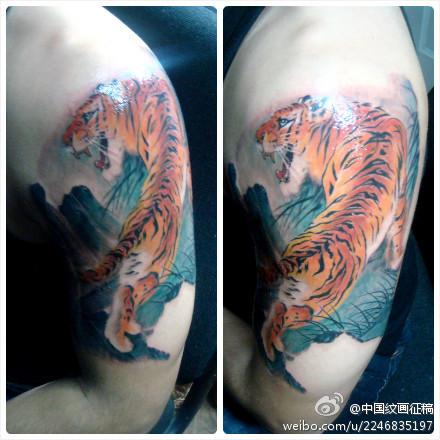 男人手臂精美的彩色老虎纹身图案