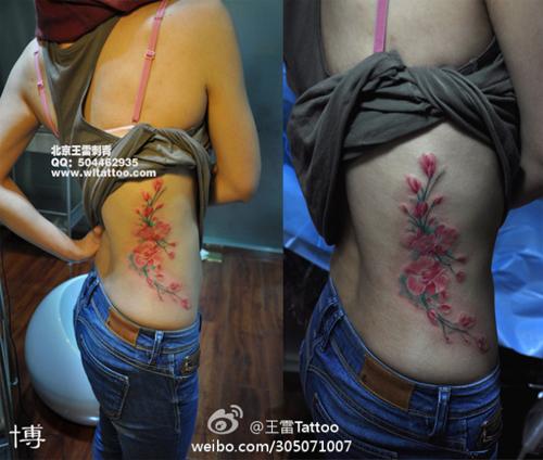 植物花卉图案大全_植物花卉装饰图案纹样公社MM采集到边框花