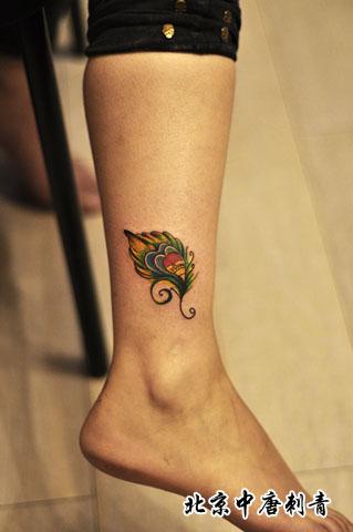 女生小腿时尚漂亮的孔雀羽毛纹身图案