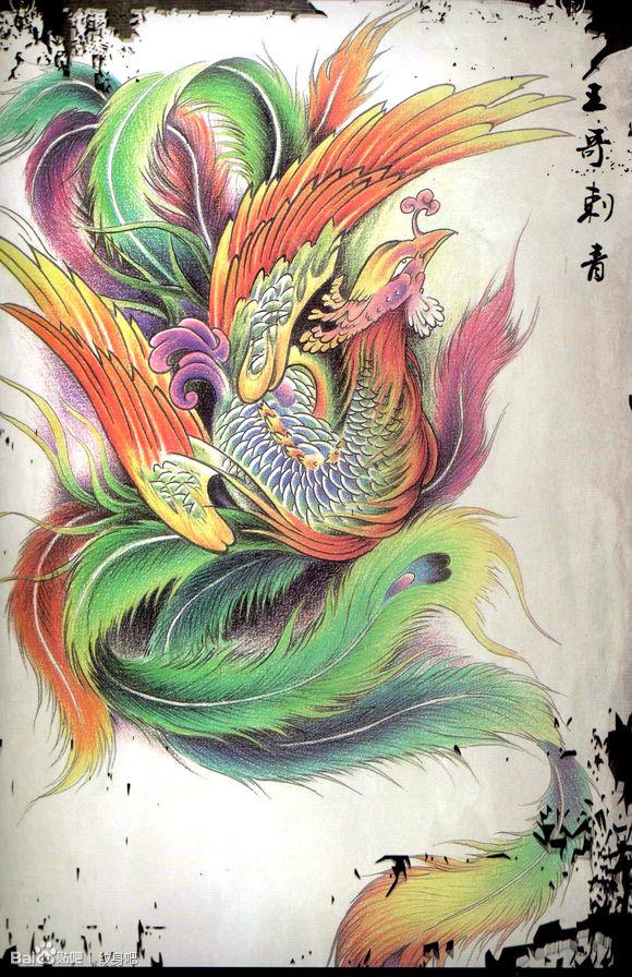 漂亮时尚的彩色凤凰纹身手稿