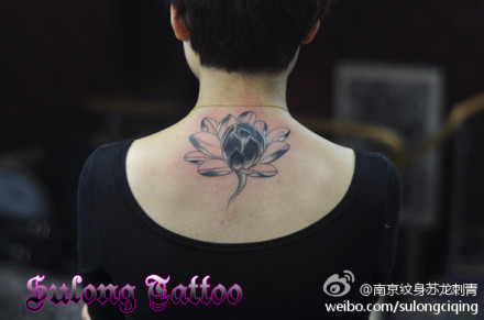 美女颈部唯美的黑白莲花纹身图案图片