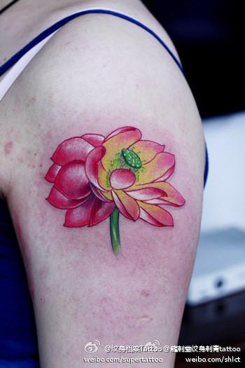 女生手臂艳丽漂亮的彩色莲花纹身图案