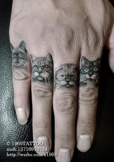 手臂可爱呆呆的猫咪纹身图案