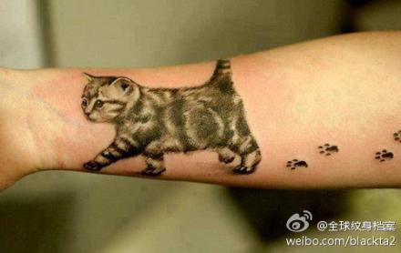 手臂小巧可爱的猫咪纹身图案