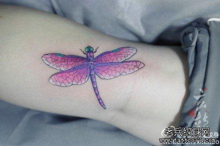 女生腿部潮流唯美的罂粟花熊爪印纹身图案