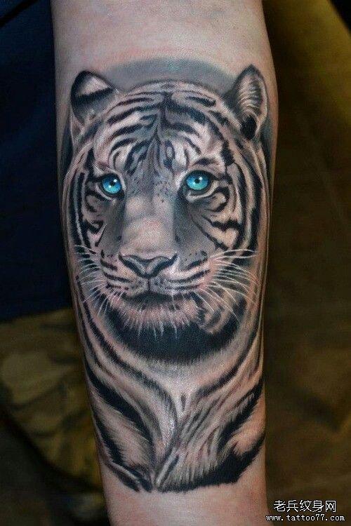 推荐一款超酷小臂老虎纹身图案