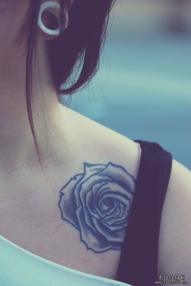 分享一款锁骨玫瑰花纹身图案