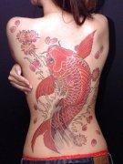 分享一款满背红色鲤鱼纹身图案