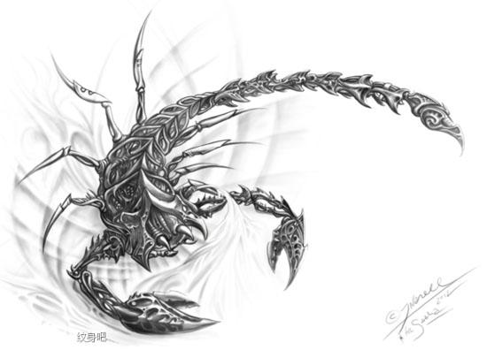 纹身纹一只蝎子多少钱图片
