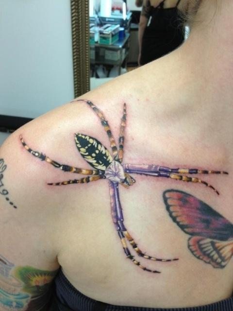 推荐一款精致的肩胛骨蜘蛛纹身图案