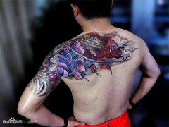 男人腰部经典流行的鲤鱼菊花纹身图案图片