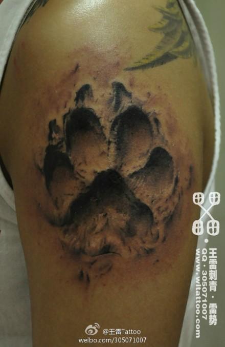 款熊爪印纹身图案图片