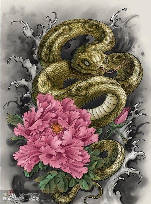 很帅经典的一款蛇牡丹纹身手稿