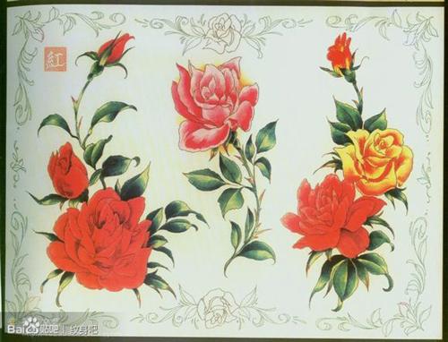 潮流时尚的的一组彩色玫瑰花纹身手稿