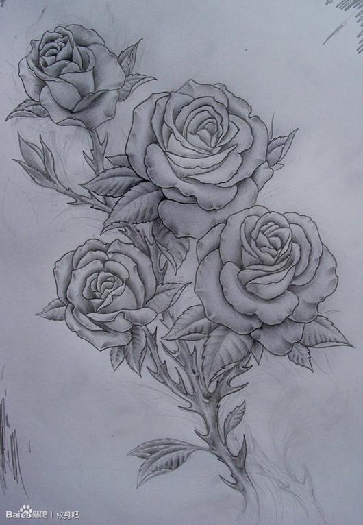 潮流时尚的一款黑灰玫瑰花纹身手稿