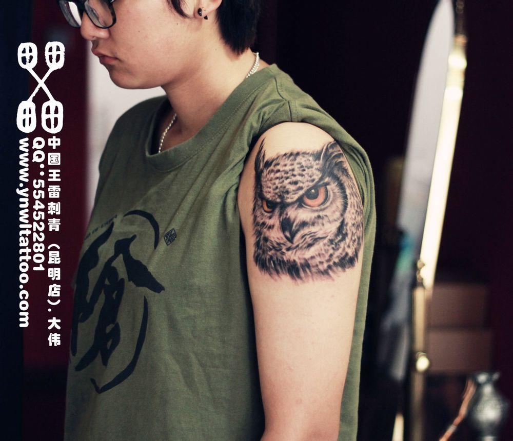 男人大臂一款唯美时尚的猫头鹰纹身图案