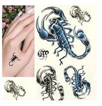 分享一张多款蝎子纹身图案