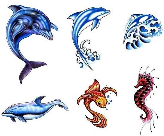 小鲸鱼纹身手稿图案由刺青网提供