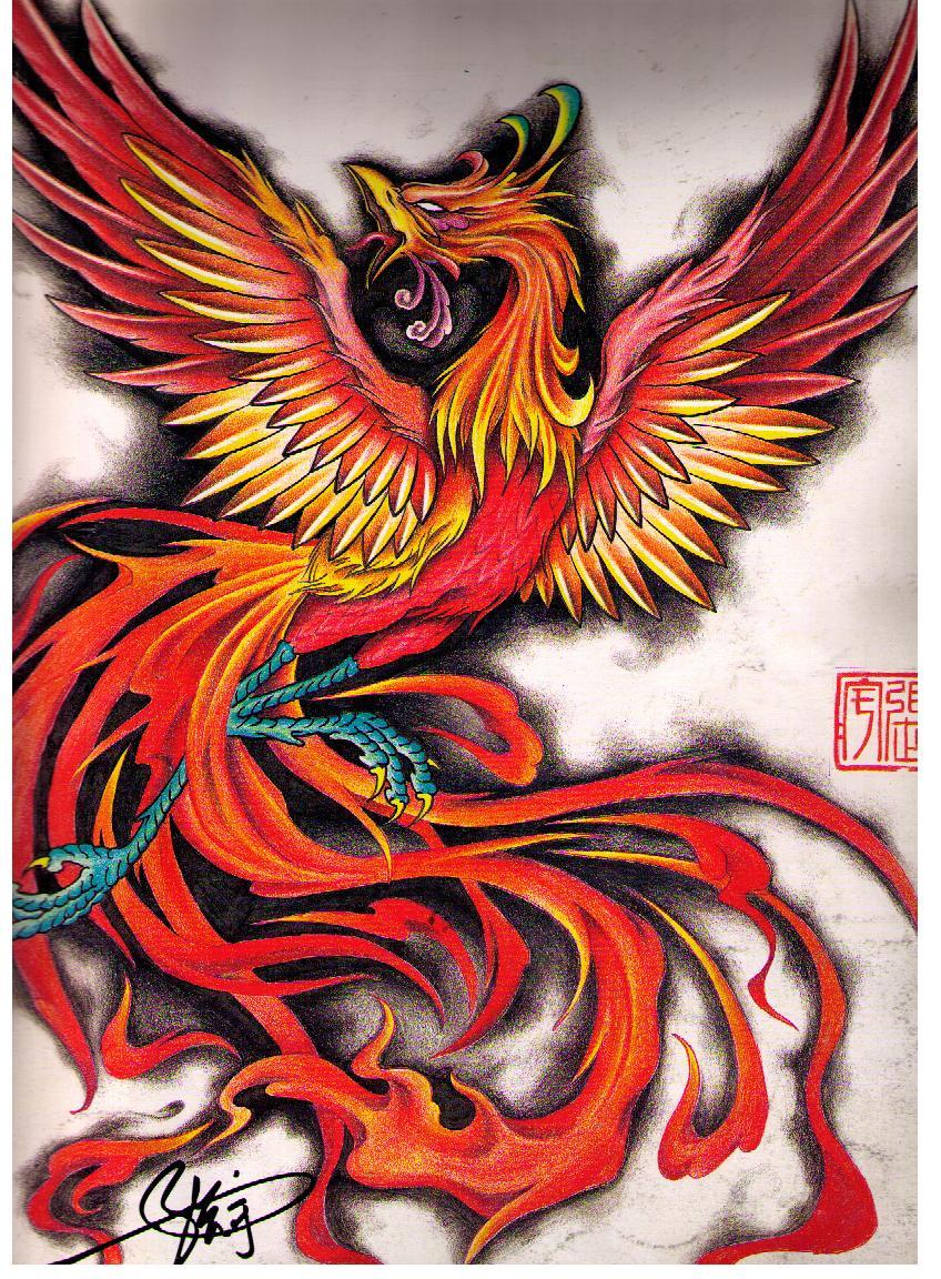 一款凤凰纹身手稿图案由武汉最好的刺青网提供