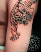 武汉最好纹身店打造的水墨虎纹身作品