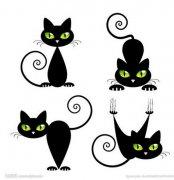 一组卡通猫咪纹身手稿图案由武汉纹身店提供