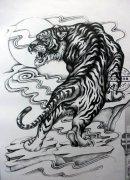 武汉最好的刺青网提供一款黑灰上山虎纹身手稿图片
