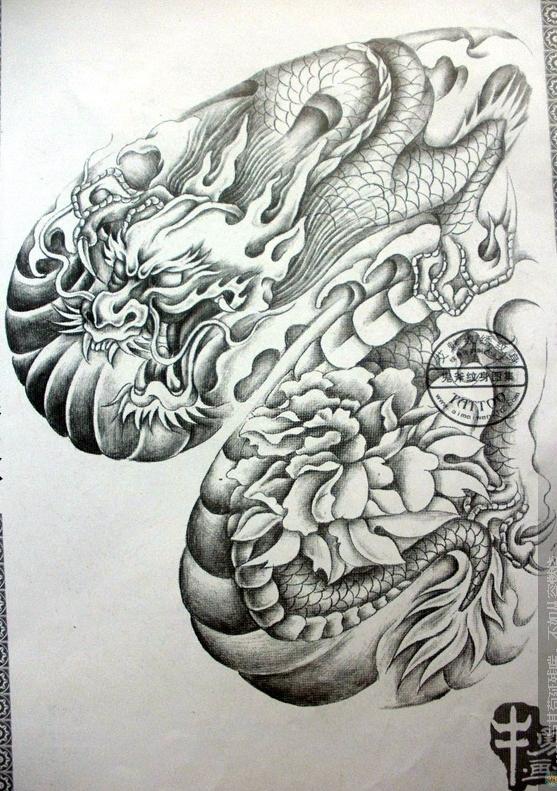 半胛麒麟纹身图_欧美半胛纹身手稿图片