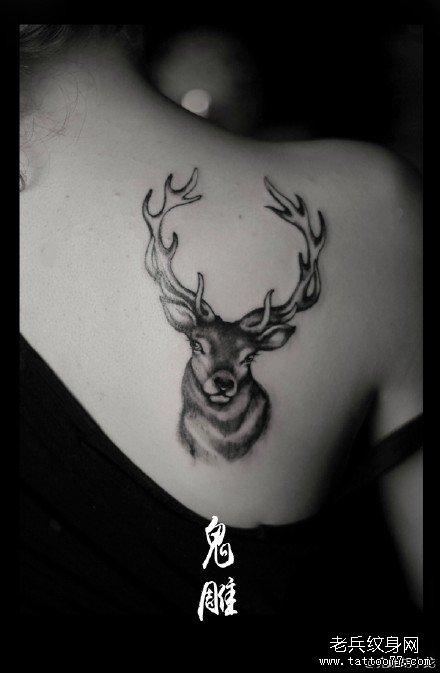 纹身鹿头图案图片_纹身鹿头图案图片下载图片