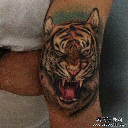 老虎纹身手分享展示图片