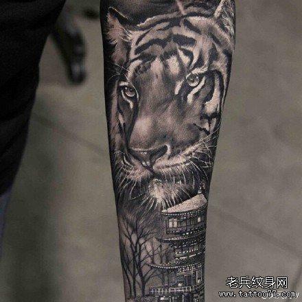 手臂老虎纹身图案 (440x440)