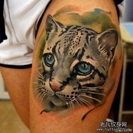 纹身图片 手臂 2016动物狼
