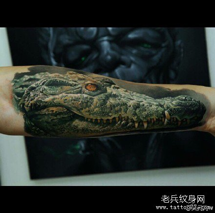 手部蛤蟆毒蛇纹身图案图片