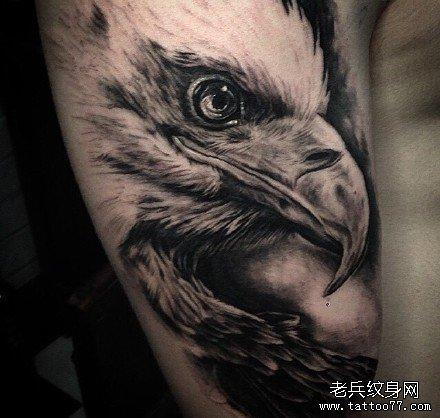 胳膊霸气鹰纹身图案